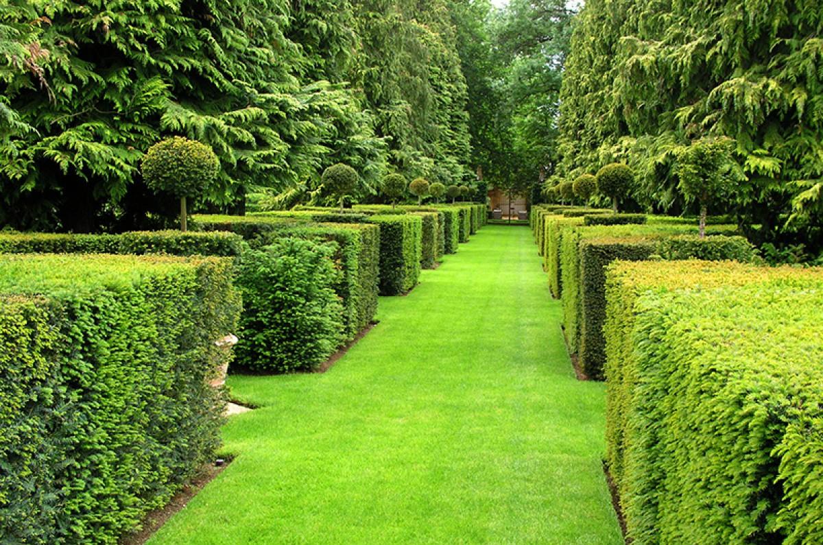 jardinier paysagiste le pontet services paysagers et forestiers qf. Black Bedroom Furniture Sets. Home Design Ideas